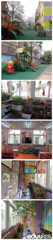 和平门幼儿园和小百合幼儿园那个好