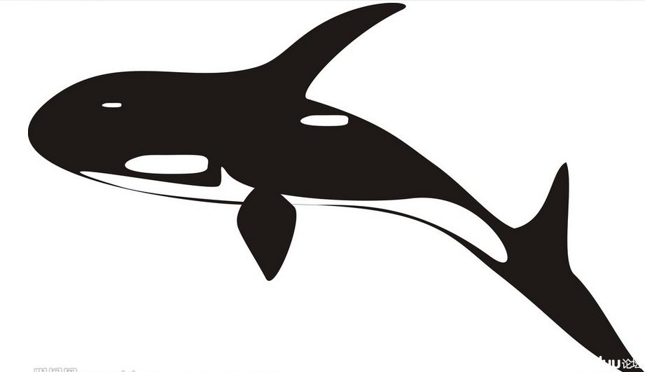 鲸鱼大海简笔画