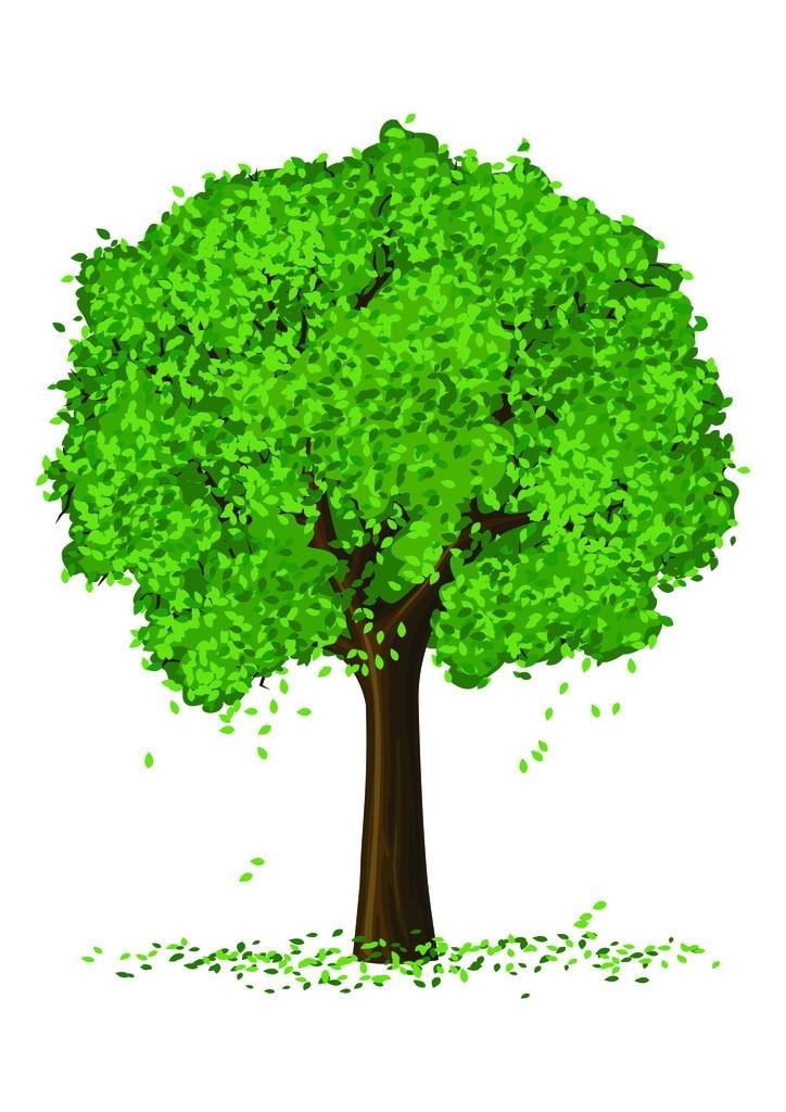 《我的创意我的树》植树节照片秀