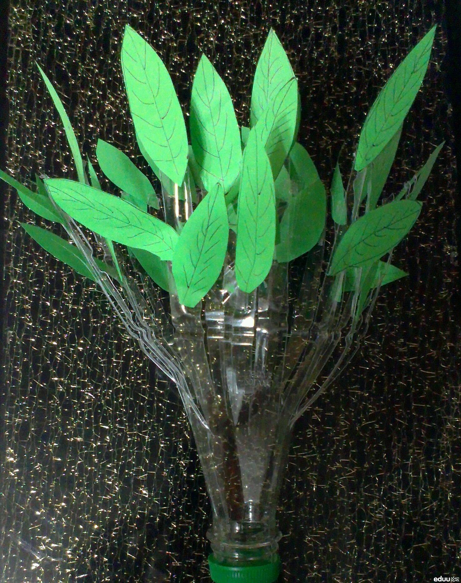 徐瑞成的创意树,塑料瓶做树干,手工的绿色叶子,很棒哈!图片