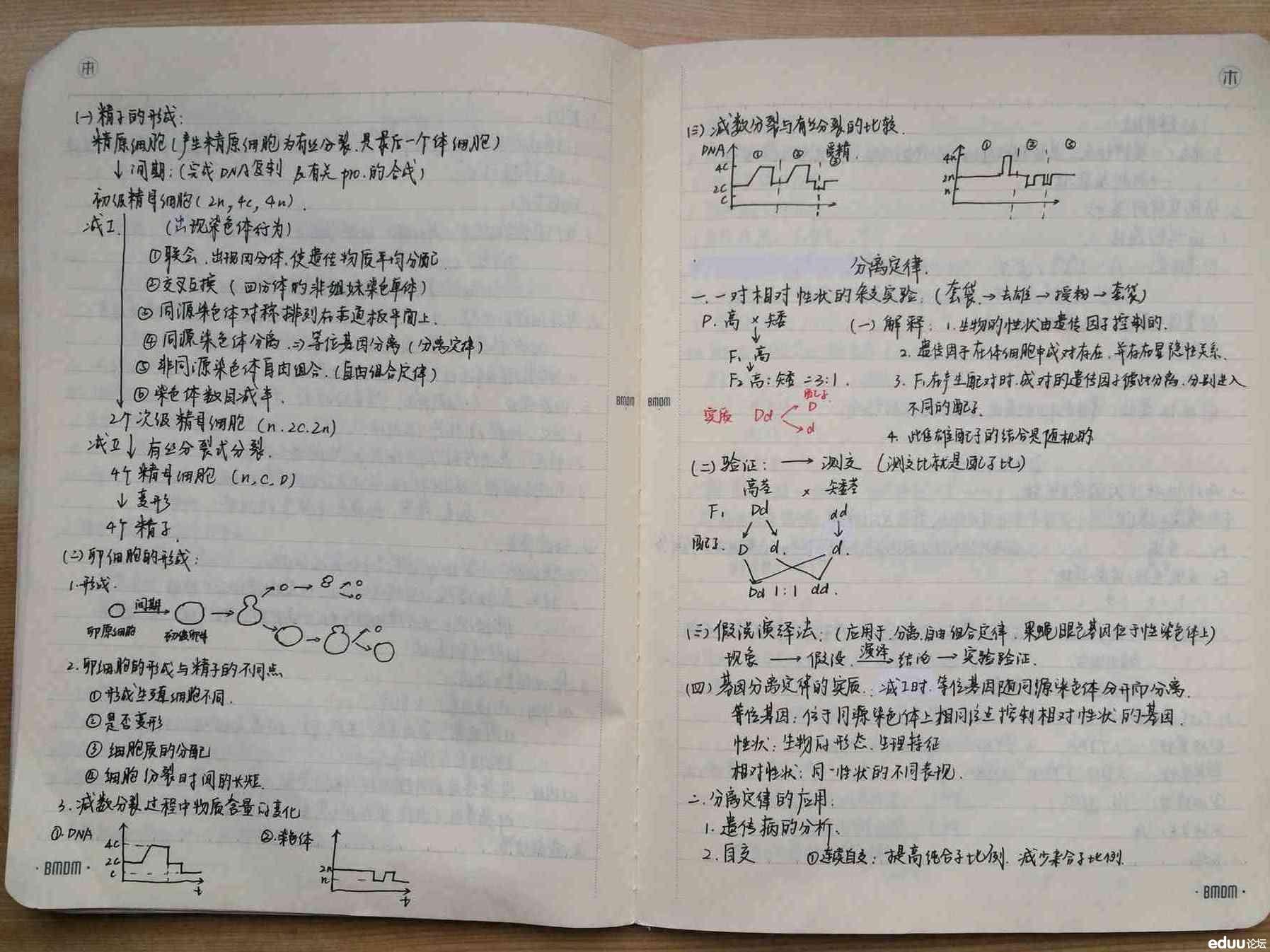 物理高中高中有哪几本_课本课本高中有几本几月城分上能物理中考图片