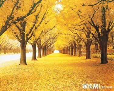 描写秋天的好词好句大全