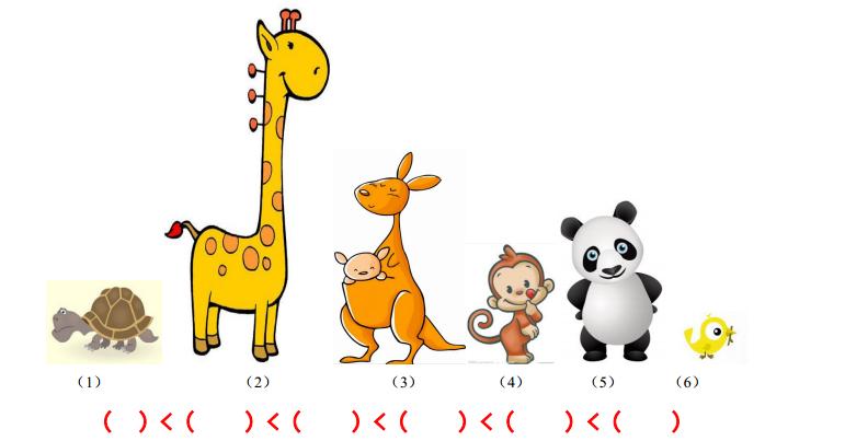 6个小动物在比身高,想一想