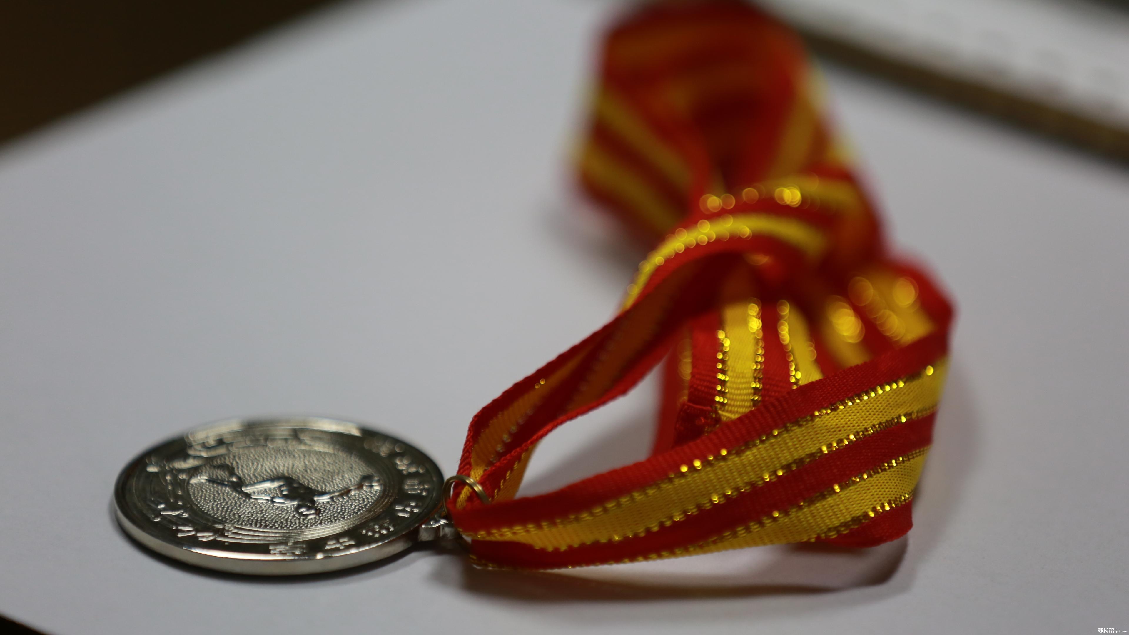 千年第二的奖牌,没有项目名称。