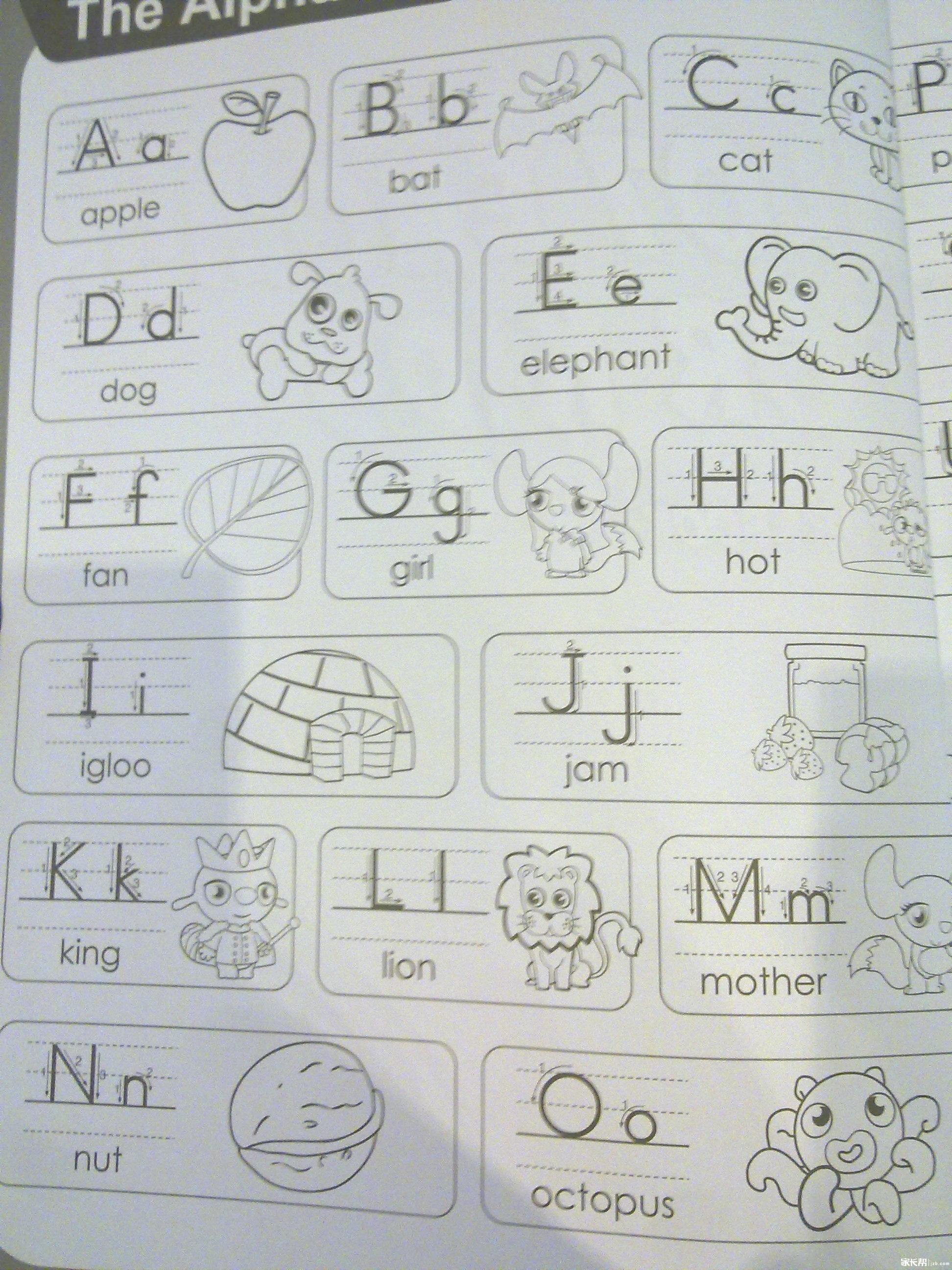 字母书写规范及笔顺一.jpg