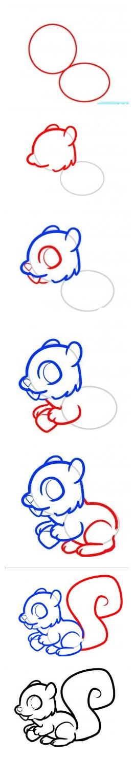 【幼儿简笔画:动物篇5(可爱的松鼠)】