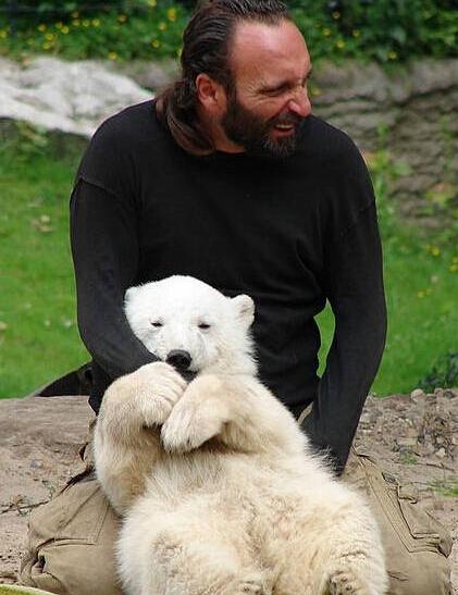 一只萌到心塞的小北极熊knut的故事