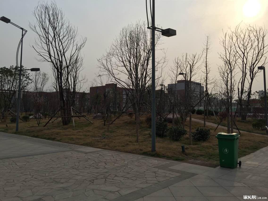 续活动第一站 郑州枫杨外国语中学名校游图片