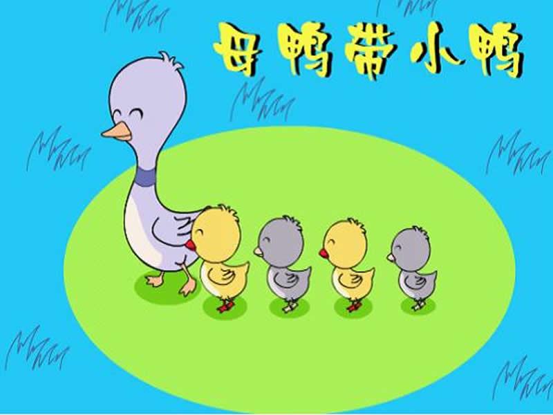 社会鸭图片大全可爱