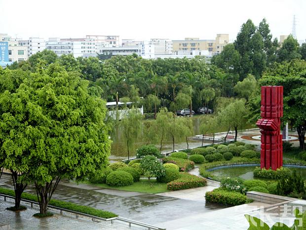 校园美景.jpg