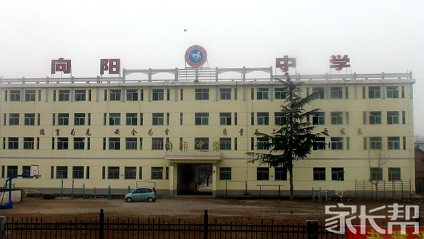 我眼中不一样的初中【重庆市云阳县向阳初级中年级学校九英语图片