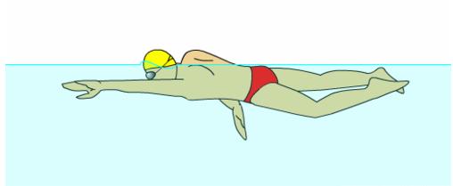中考游泳:自由泳的动作要领图解及呼吸技巧