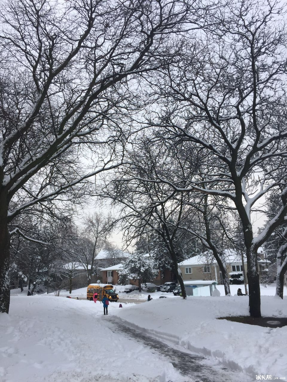 今天窗外的白雪皑皑
