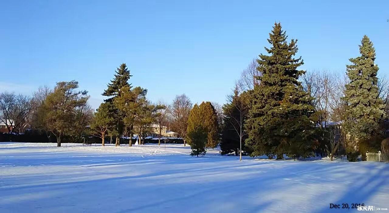 雪后多伦多,小区雪景