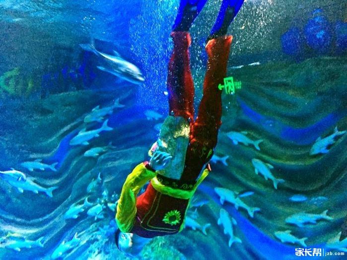 幻太奇海洋面具狂欢节,免费畅游海洋馆等你抢