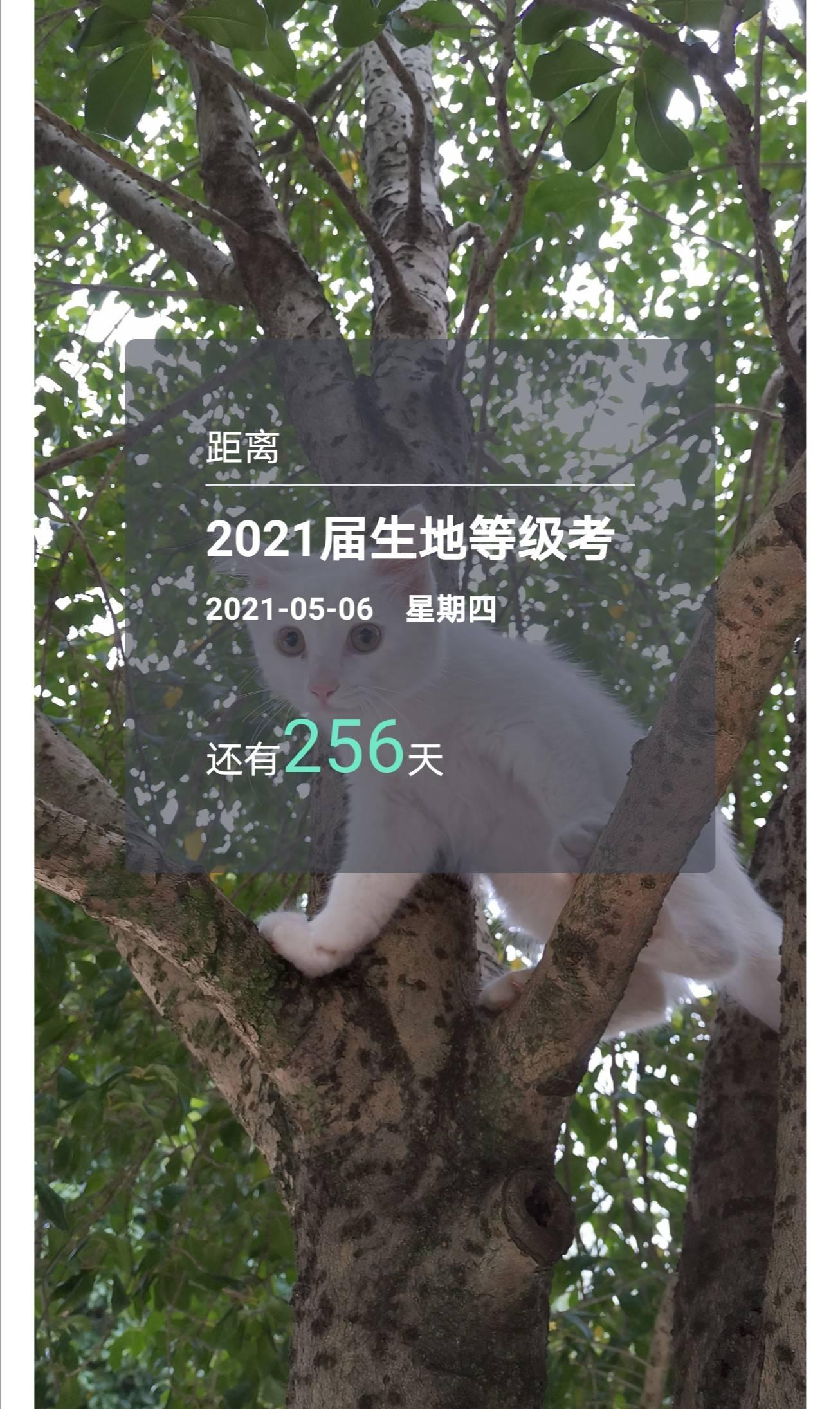 2020-08-23 07.38.12.jpg