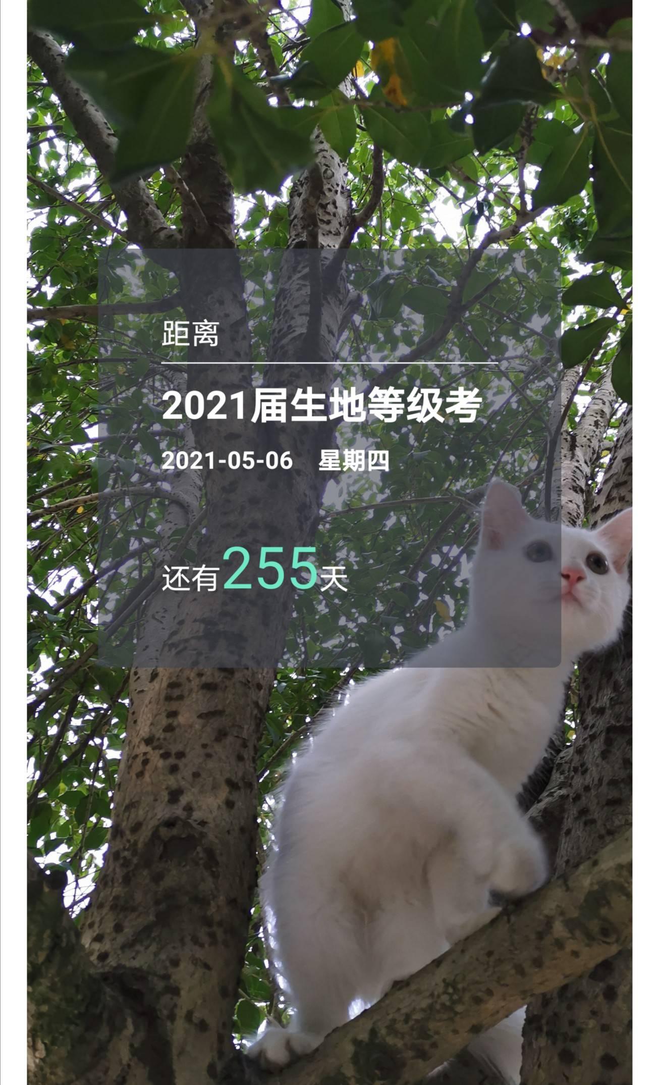 2020-08-24 07.59.53.jpg