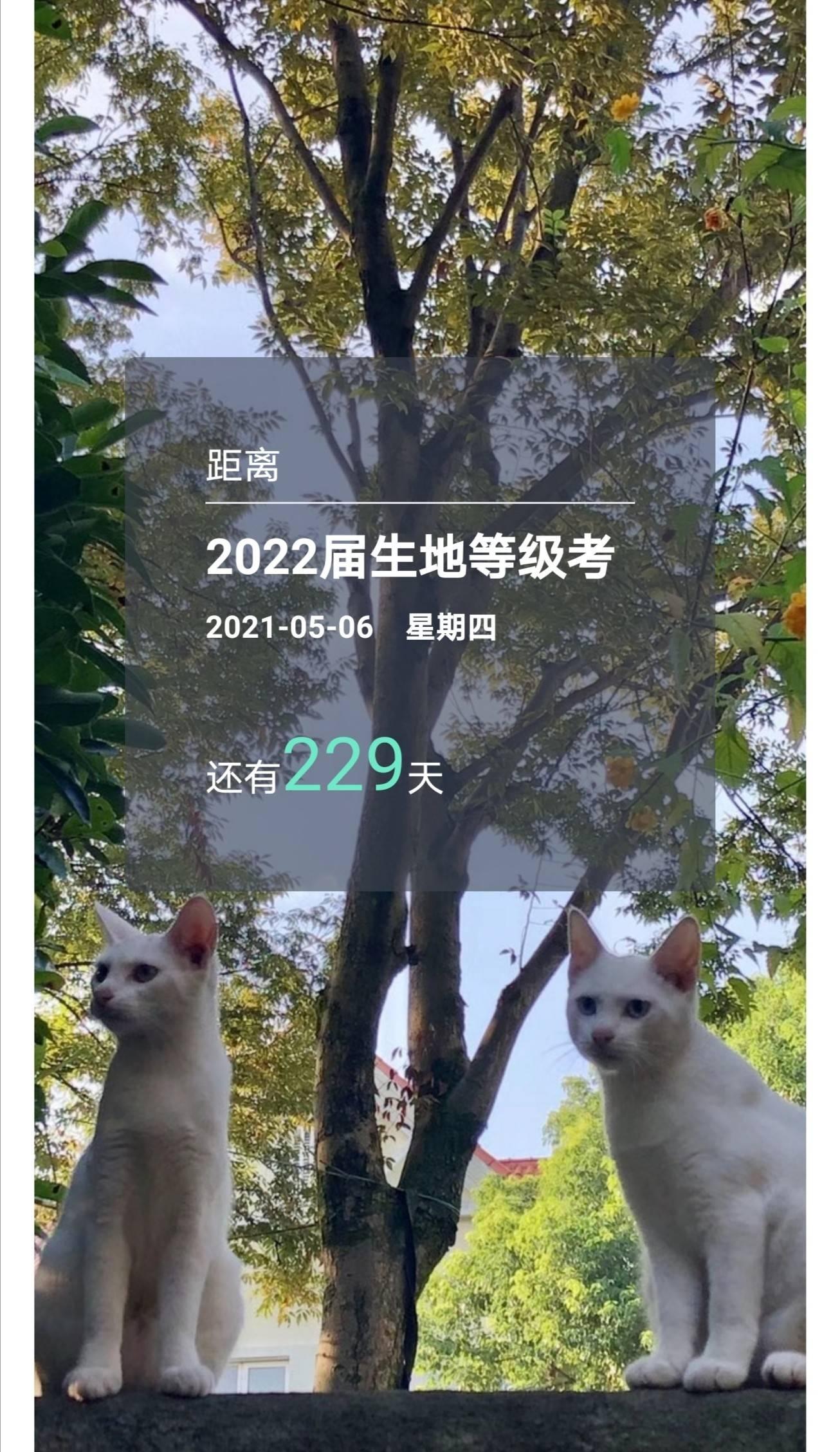 2020-09-19 06.49.10.jpg
