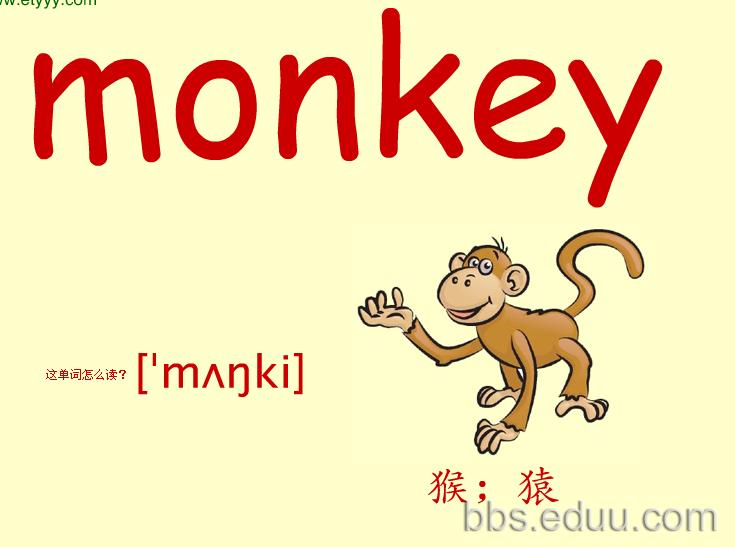 小学一年级关于动物的单词图片