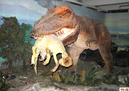 """""""古生物陈列""""踏着史前生命的足迹,通过大量的化石标本展示了脊椎动物"""